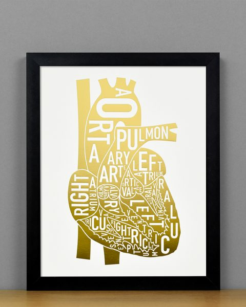 Heart Anatomy Diagram, Gold Foil, in Black Frame
