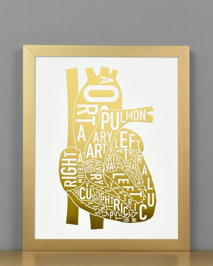 Heart Anatomy Diagram, Gold Foil, in Bronze Frame