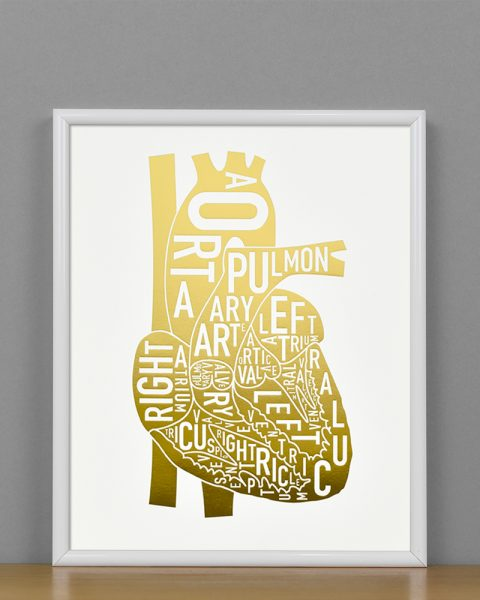 Heart Anatomy Diagram, Gold Foil, in White Metal Frame