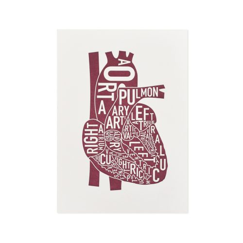 Heart Mini Letterpress Anatomy Art