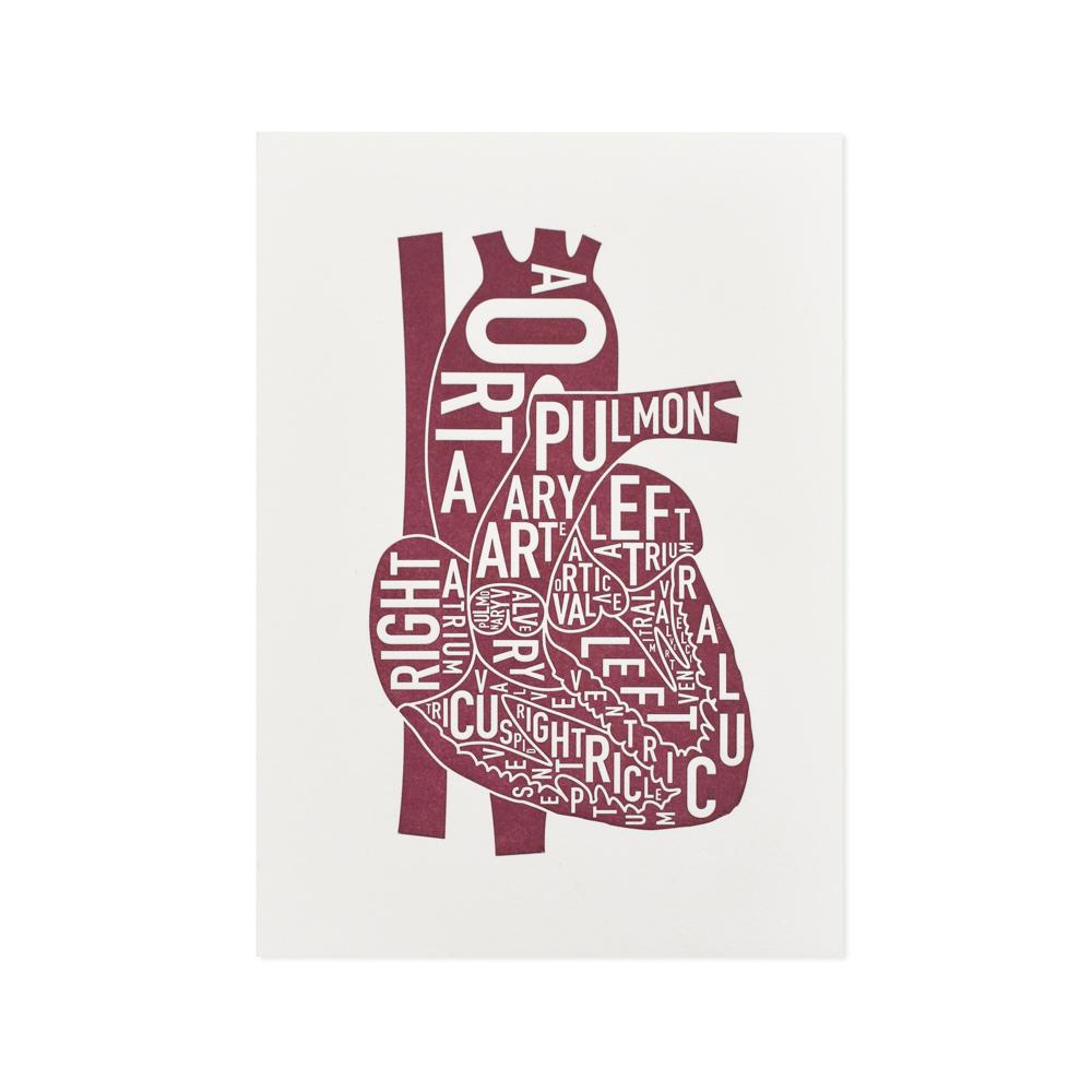 The Heart Anatomy Art Mini Letterpress Print