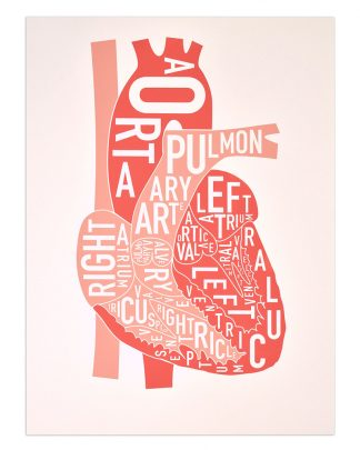 Heart Anatomy Typographic Art Prints Human Heart Design By Ork Posters