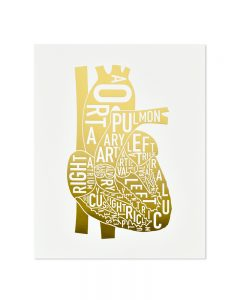 gold letterpress anatomical heart print