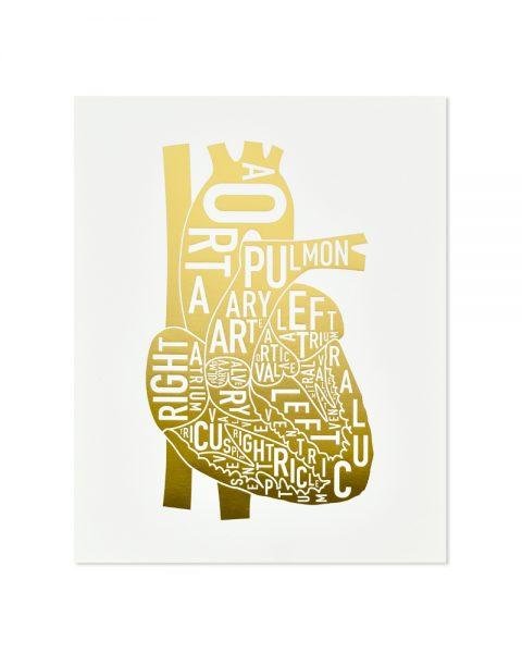 gold letterpress anatomical heart print