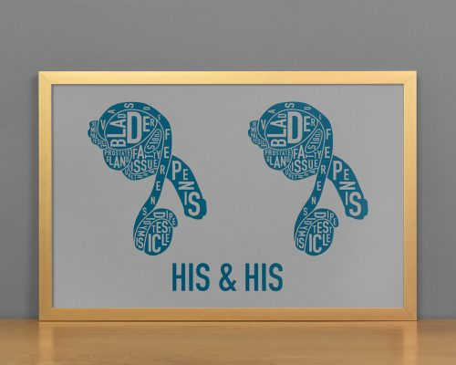 His & His Anatomy Diagram, Grey/Teal, in Bronze Frame