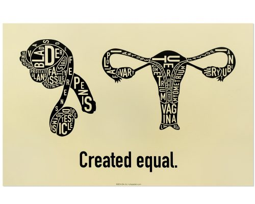 Created Equal Male & Female Anatomy Diagram, Tan/Black