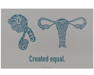 Created Equal Male & Female Anatomy Diagram, Grey/Teal