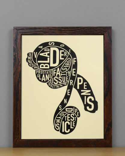 "Framed Male Anatomy Typographic Mini Print, 8"" x 10"", Tan & Black in Dark Wood Frame"