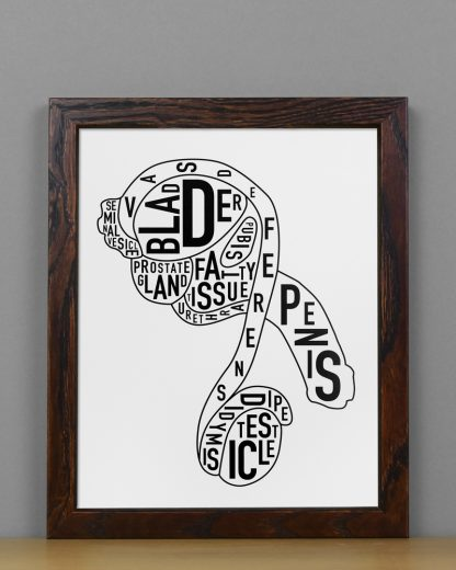 "Framed Male Anatomy Typographic Mini Print, 8"" x 10"", B&W in Dark Wood Frame"