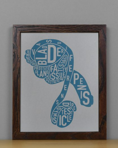 "Framed Male Anatomy Typographic Mini Print, 8"" x 10"", Grey & Blue in Dark Wood Frame"