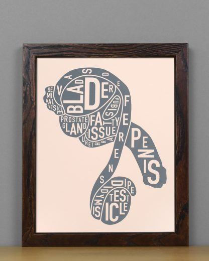 "Framed Male Anatomy Typographic Mini Print, 8"" x 10"", Blush & Grey in Dark Wood Frame"