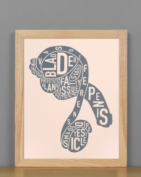"Framed Male Anatomy Typographic Mini Print, 8"" x 10"", Blush & Grey in Light Wood Frame"