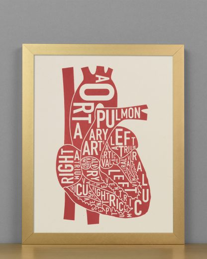 "Framed Heart Anatomy Diagram, Ivory & Red Screenprint, 8"" x 10"" in Bronze Frame"