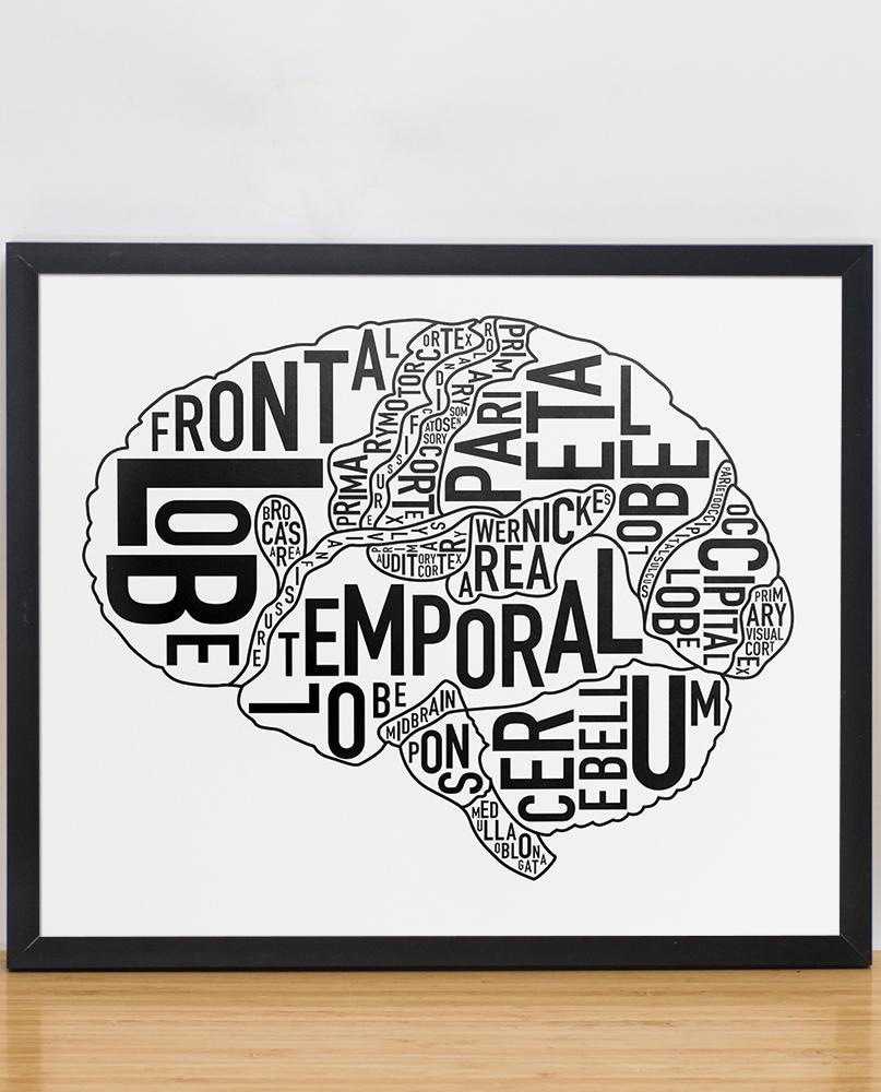 "Brain Anatomy Art 15"" x 12.5"" Classic Black & White Poster"