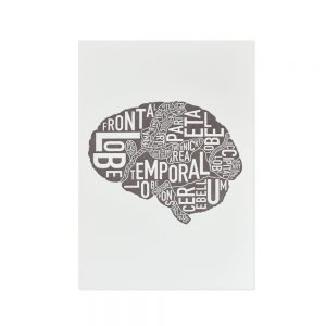 Brain Mini Letterpress Anatomy Art