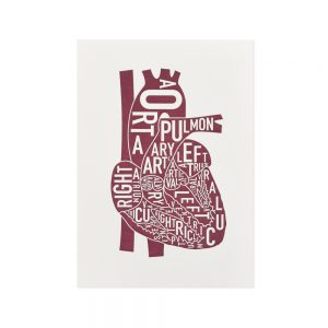 Heart Mini Letterpress Anatomy Art