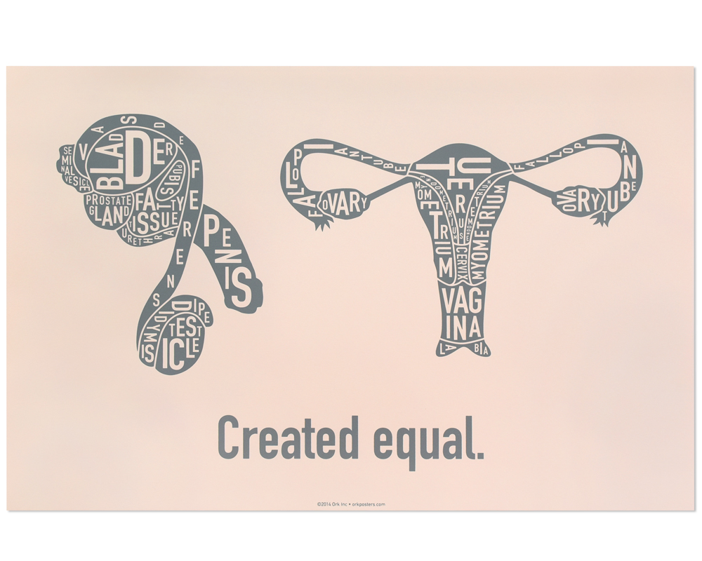 Created Equal Male & Female Anatomy Diagram, Blush/Grey