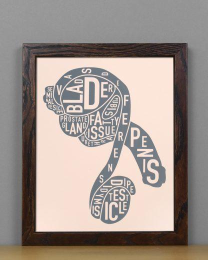 "Framed Male Anatomy Typographic Mini Print, 8"" x 10"", Blush & Grey in Dark Wood Frame"