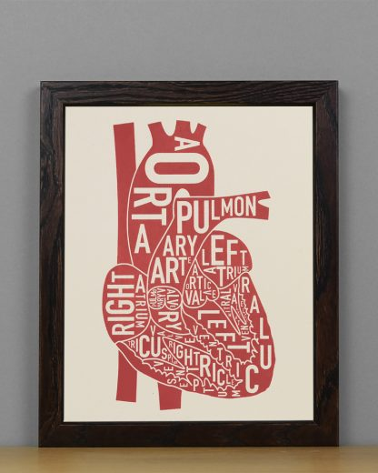 "Framed Heart Anatomy Diagram, Ivory & Red Screenprint, 8"" x 10"" in Dark Wood Frame"